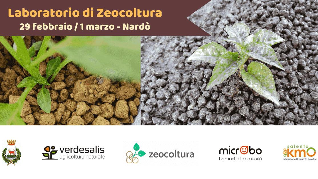 Laboratorio di Zeocoltura - Nardò (Le)